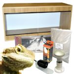 Bearded Dragon Starter Kits